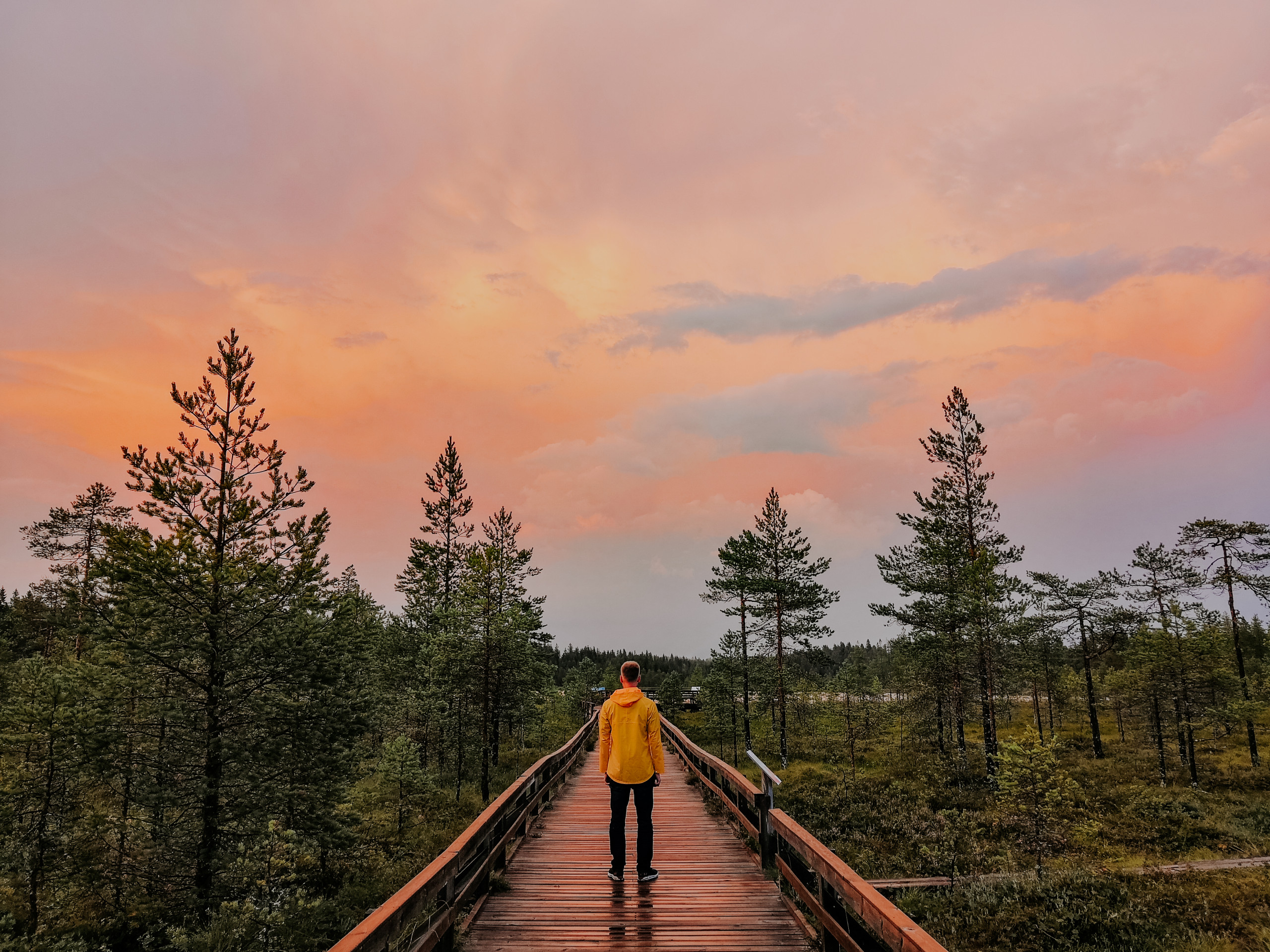 Man standing in a yellow jacket on a wooden walkway overlooking a forest in Finland.